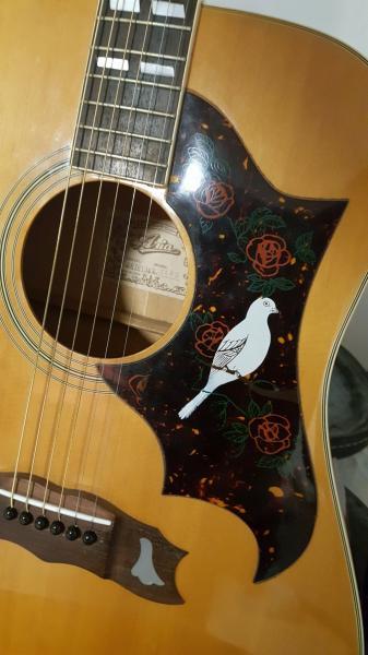 גיטרה אקוסטית ARIA WHITE DOVE 71