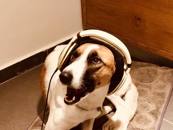 מה נשמע ? שלום ? אני עושה מיקסינג מקצועי למוזיקה אלקטרונית