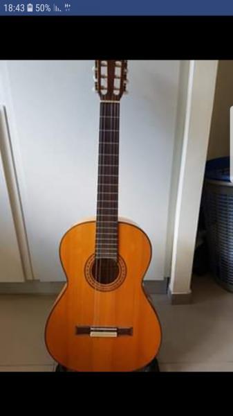 גיטרה ספרדית קלאסית esteve 5f